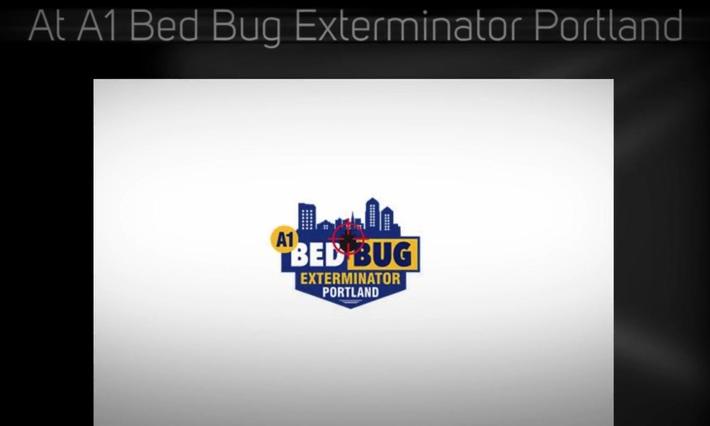A1 Bed Bug Exterminator Portland