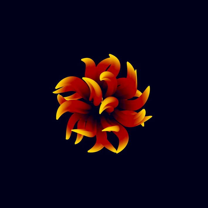 Blooming Shape (Animation)
