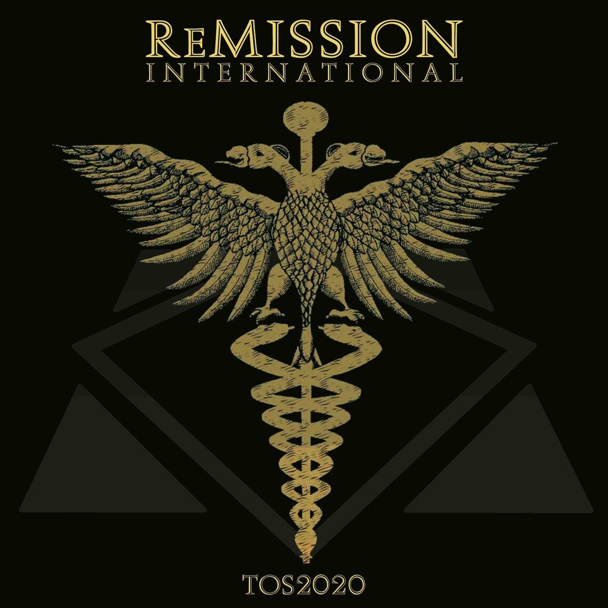ReMission International,