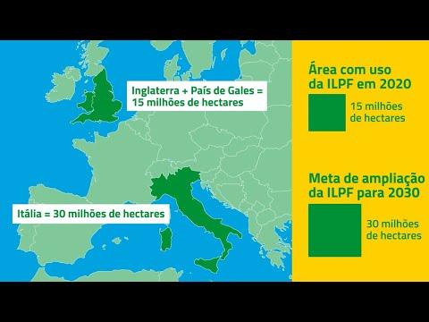 ILPF leva sustentabilidade ao campo brasileiro