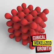 Cubical Voxelized Growth