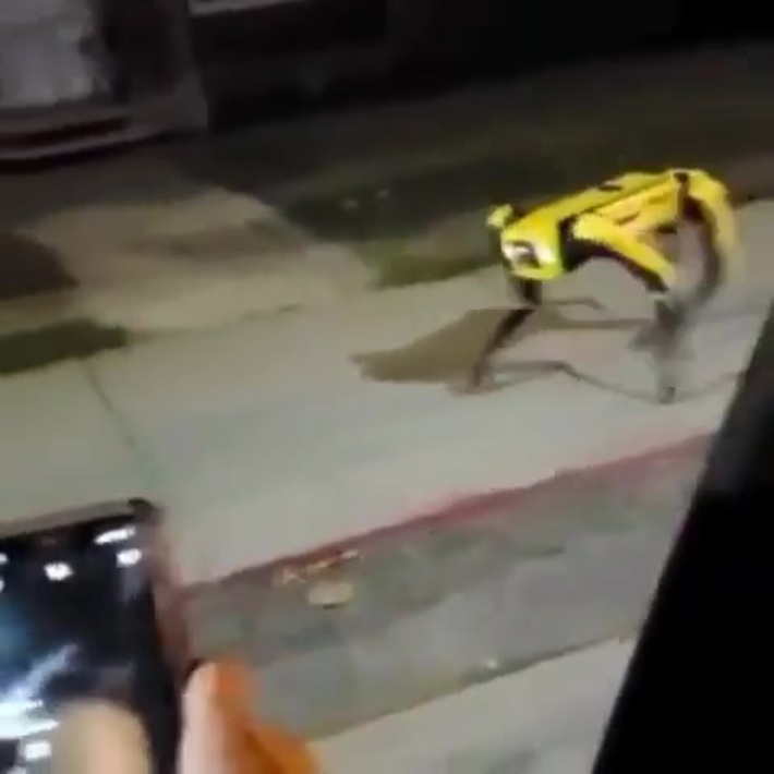 Robotic dog seen walking the streets