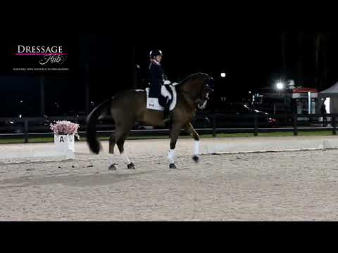 Brittany Frasers' All In Is STILL All Out - Recognizing An Unhappy Dressage Horse Part 2