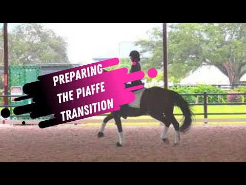 Preparing The Piaffe Transition