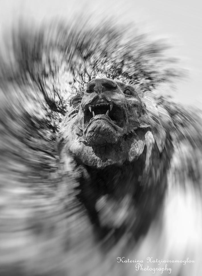 Το λιοντάρι.....που βρυχάται