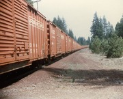 Arcata & Mad River Boxcars