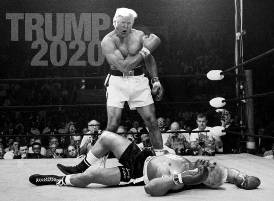 trump-fighter
