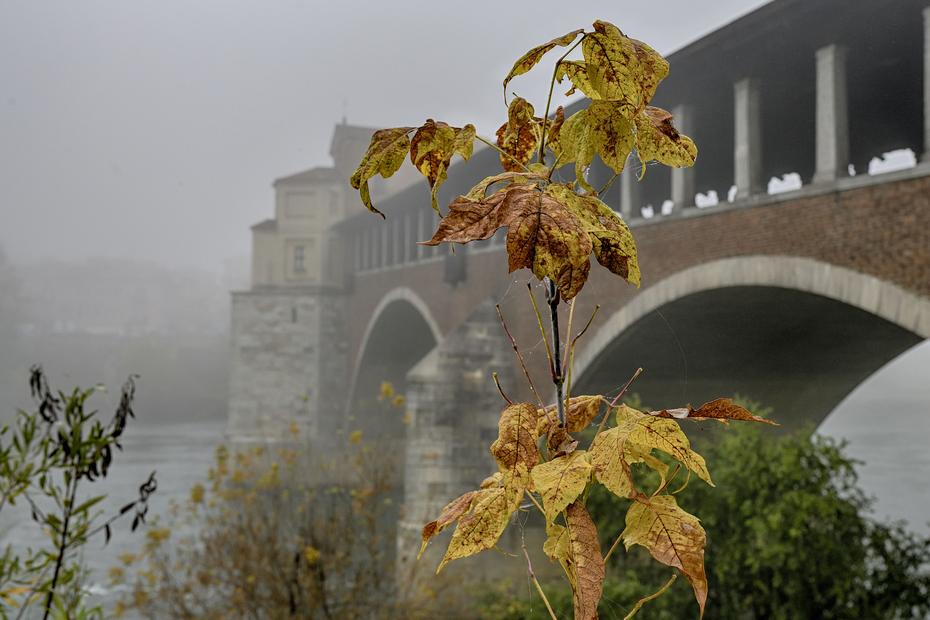 31 ottobre_Pavia