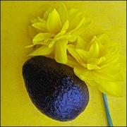 Avocado with Flowers