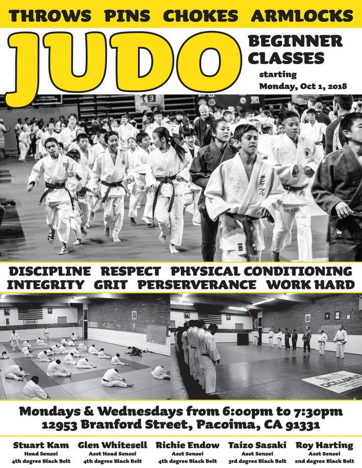beginner judo class flyer
