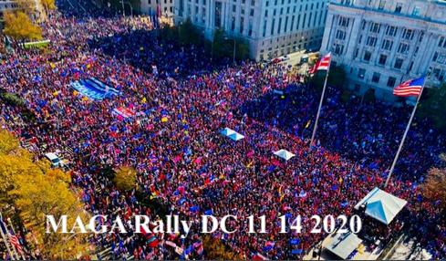 MAGA Rally DC 11 14 2020