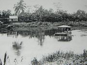 Kampung Milau Kudat