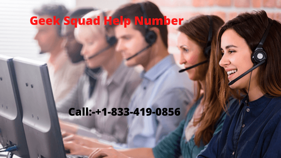 Geek Squad Appointment Number in the USA