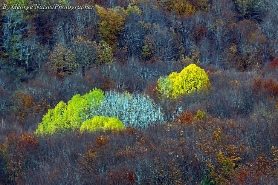 Φθινοπωρινές ανταύγειες ορεινής Δράμας