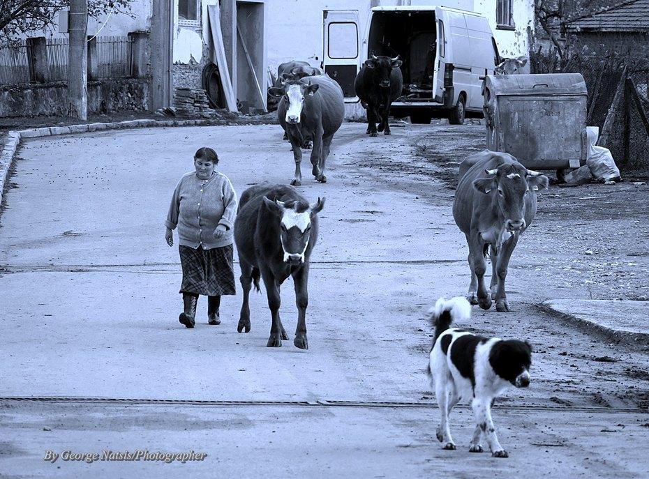 Η ζωή στο χωριό