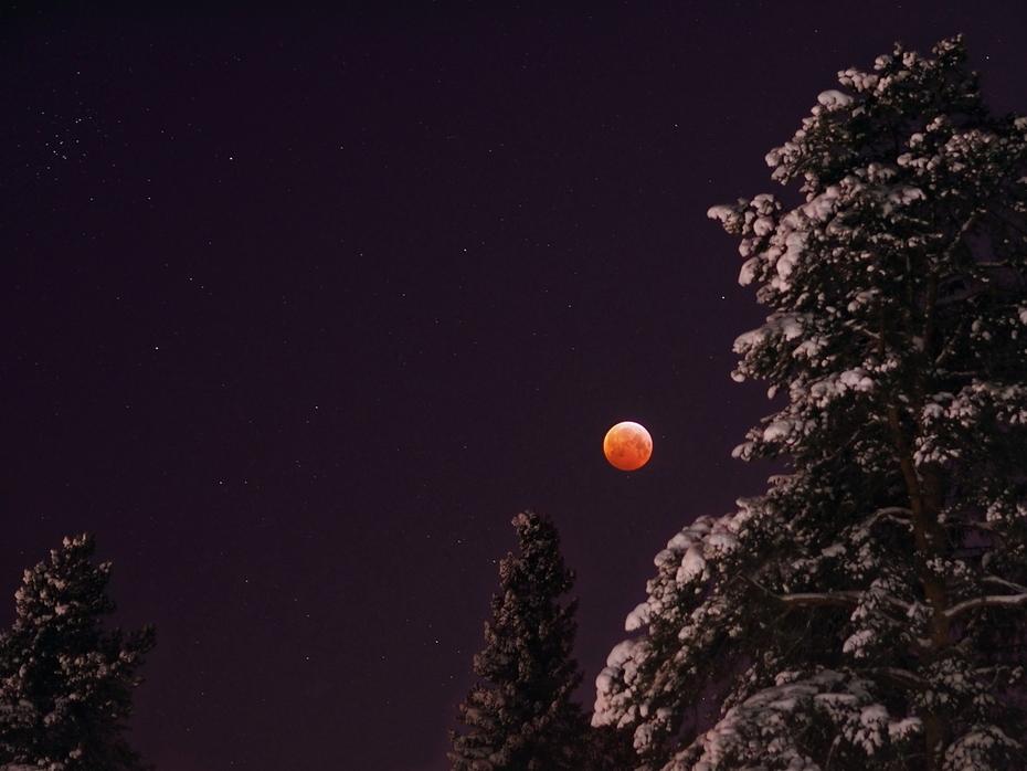 Månförmörkelse 2019