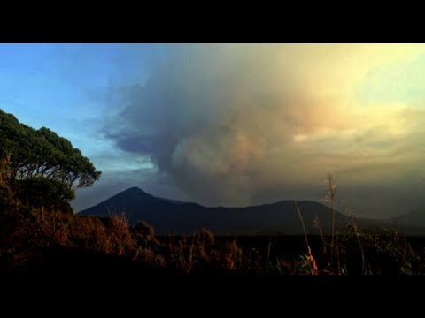 Sunspots, Volcano, Top Science News | S0 News Jan.21.2019