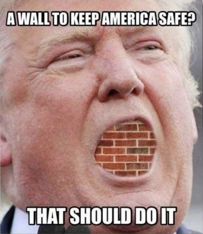 A wall to keep America safe? (Brick wall sealing Trump's mouth) That should do it