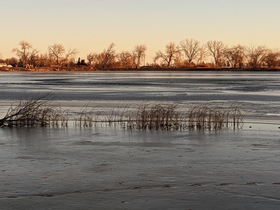 Morning light at Coot Lake