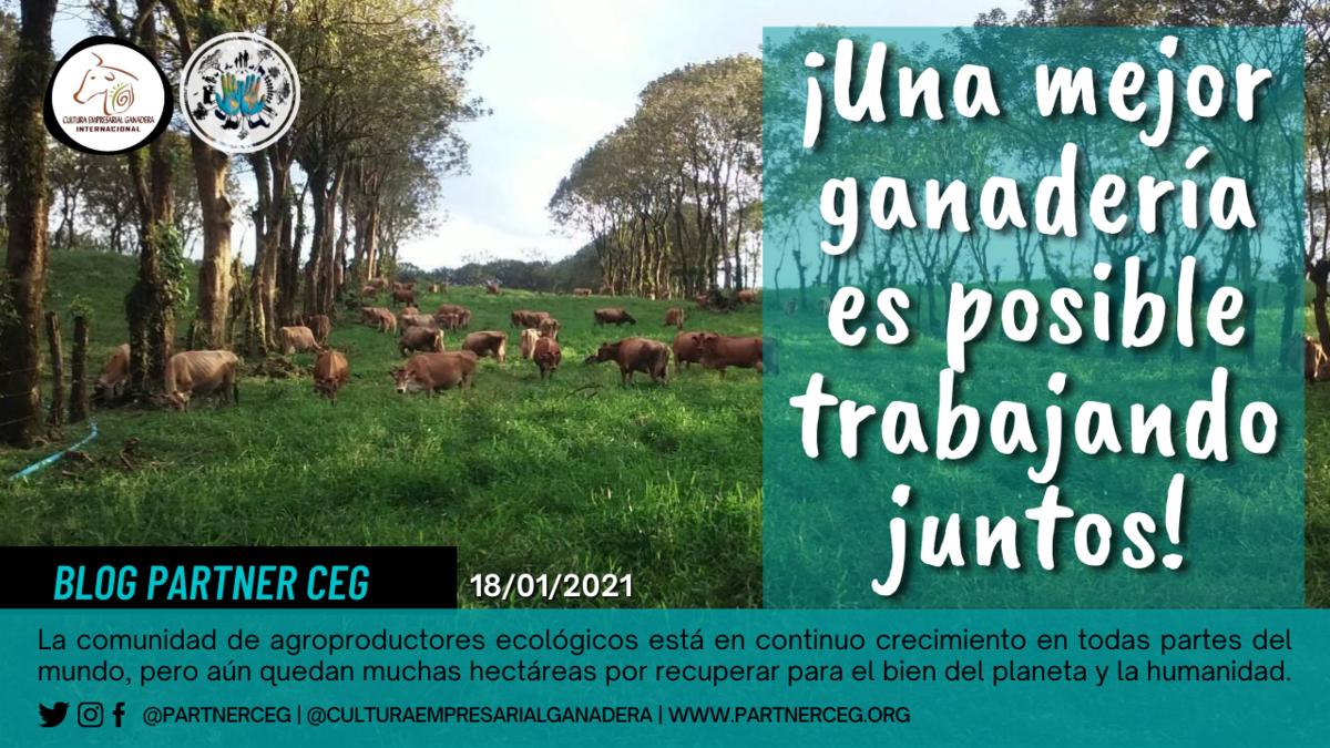 ¡Una mejor ganadería es posible, trabajando juntos!
