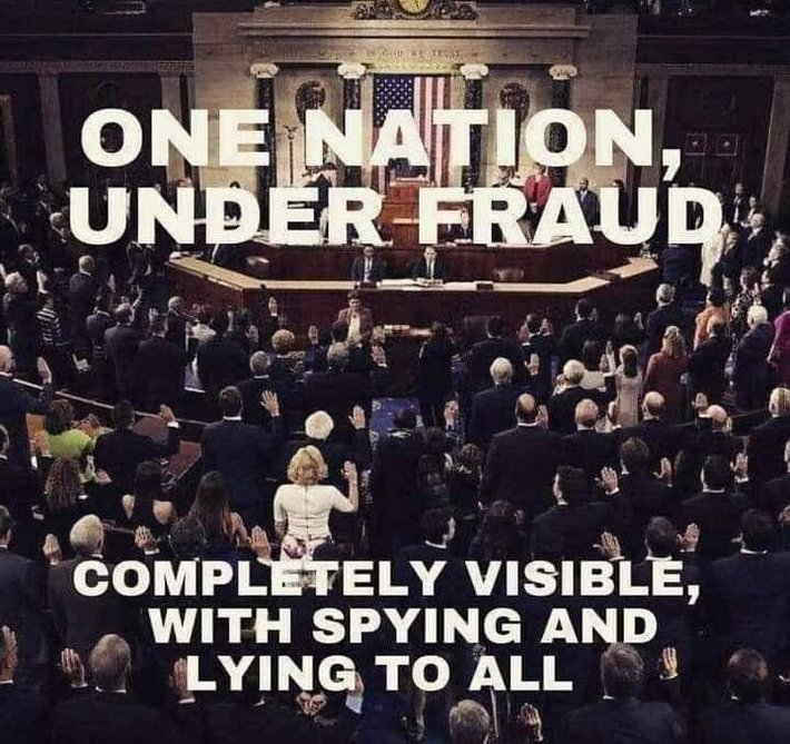 One Nation Under Fraud