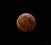 Blodmånen kl 06.29_CPC6301