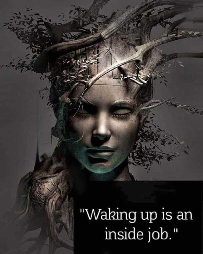 Waking up is an Inside Job