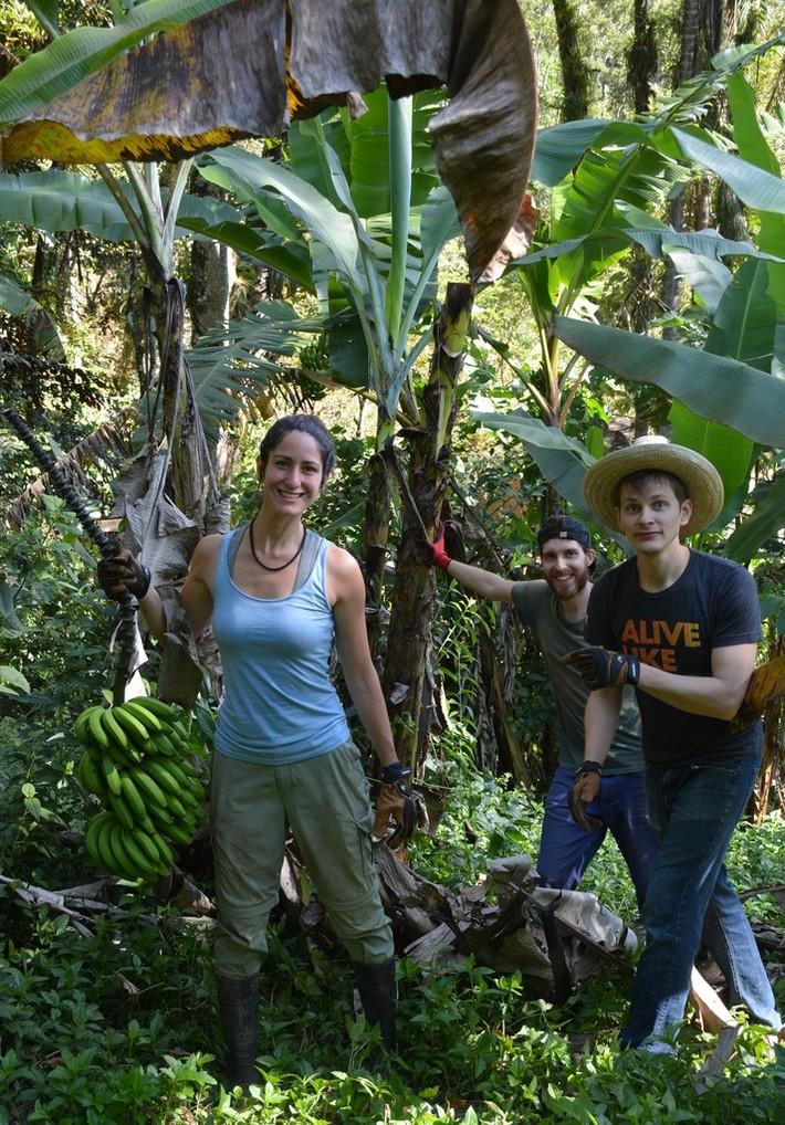 WWOOF Costa Rica