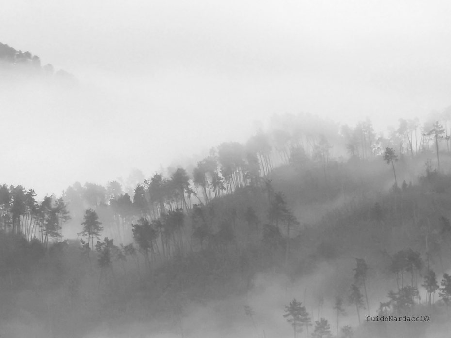 And after that there is only fog.