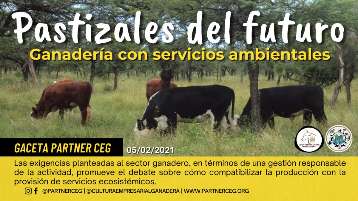 Pastizales del futuro: ganadería con servicios ambientales (INTA)