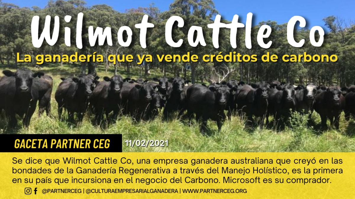 La ganadería que ya vende créditos de carbono en Australia