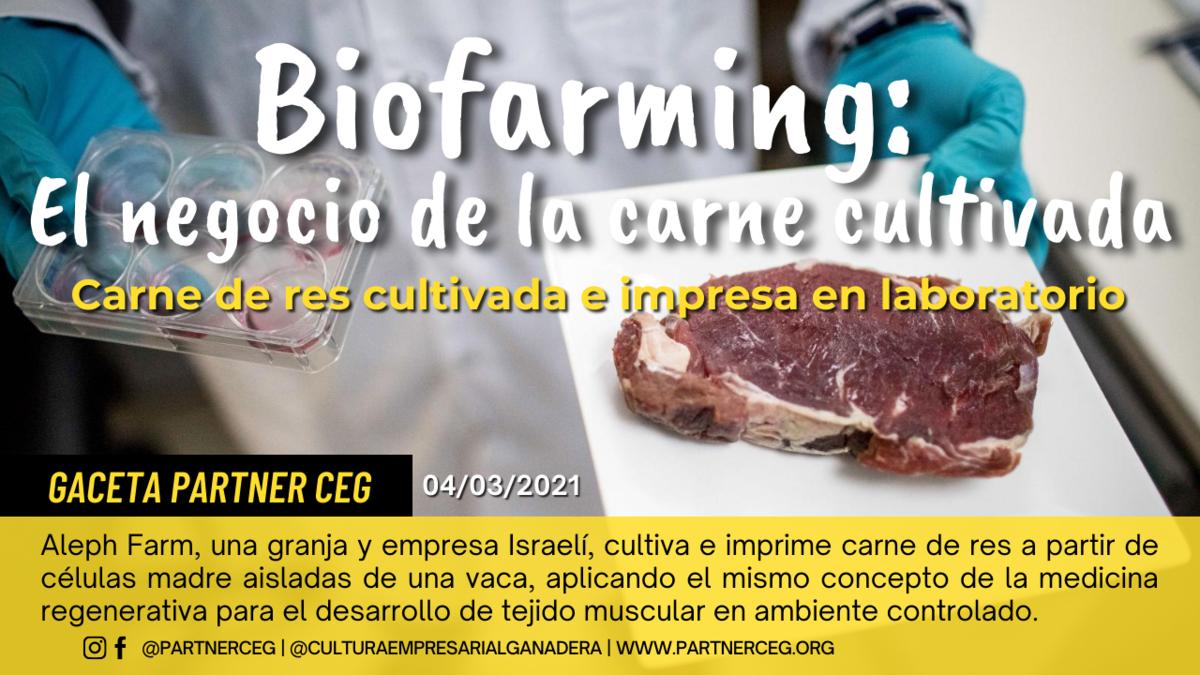 Biofarming: Carne de res cultivada en laboratorio