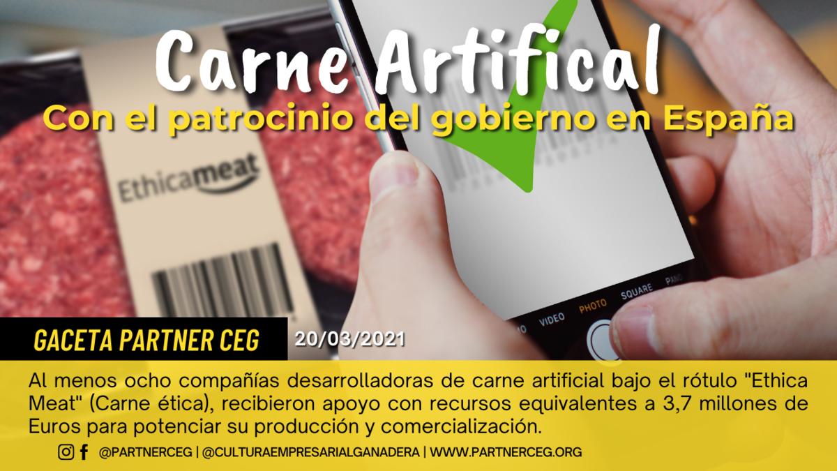 [PARTNER CEG]: Gobierno de España financia empresas de carne artificial
