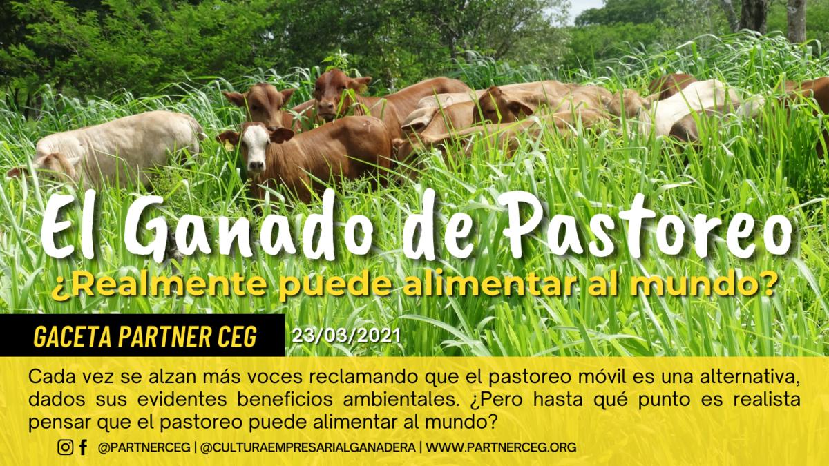 El ganado de pastoreo ¿realmente puede alimentar al mundo?