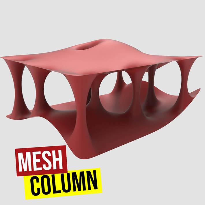 Mesh Column