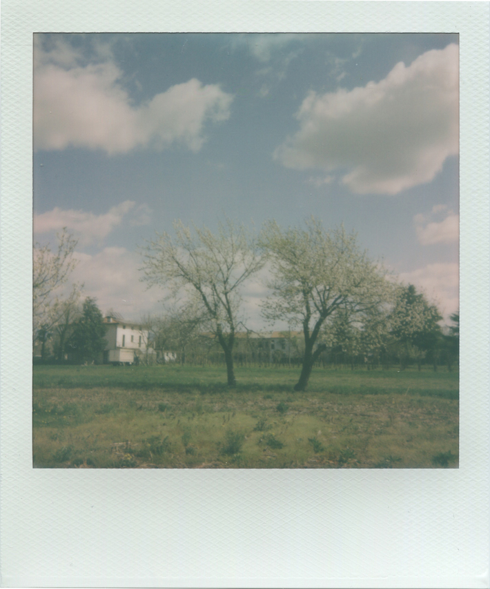 Incontri... Clouds Vs Trees