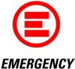 Emergency Benefit Art Auction