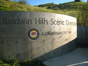Baldwin Hills Scenic Overlook Planting Day