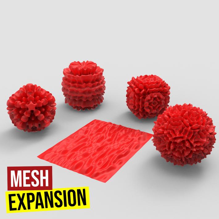 Mesh Expansion