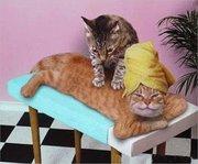 atelier massage 50% ayurvédique 50% lomi