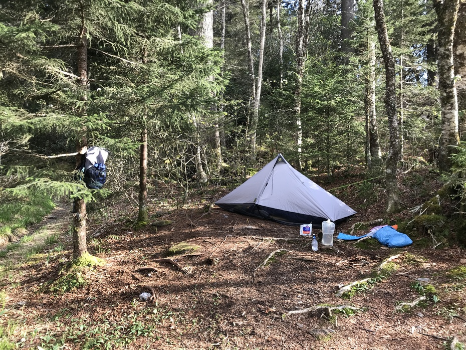Good Camp Site at Peck's