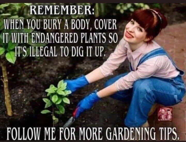 Horror Gardening Tips