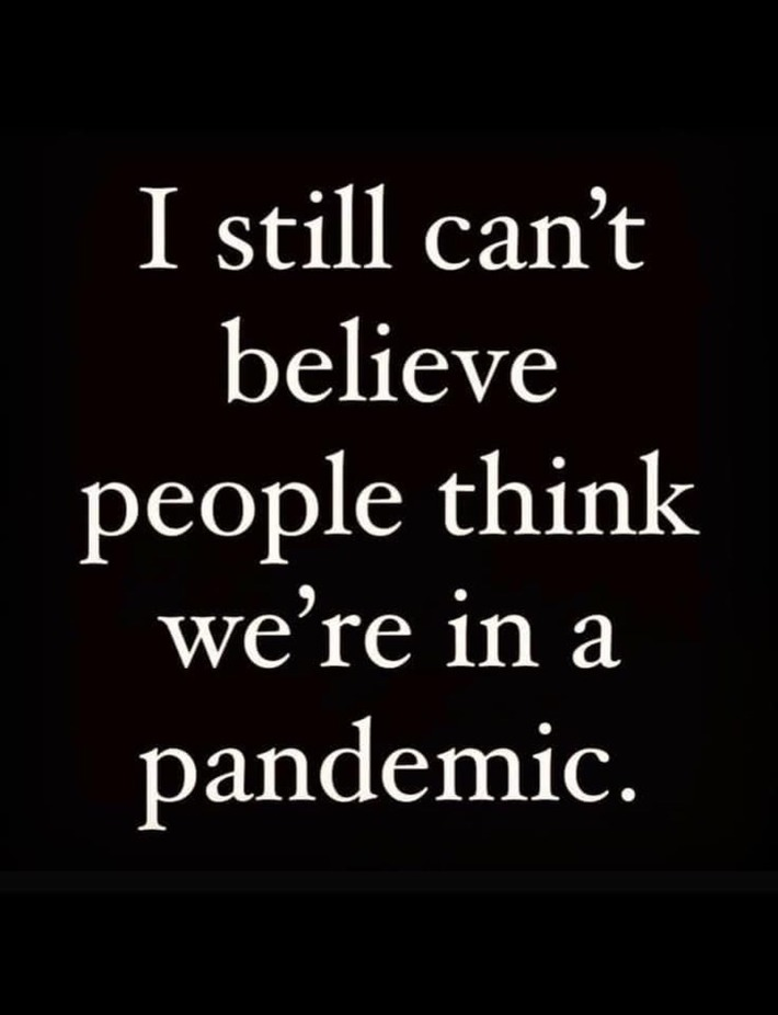 We have never been in a pandemic,but it is a biological crime by Jews