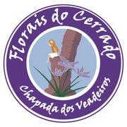 Curso Florais do cerrado e Águas cristais Junho Chapada dos VEADEIROS