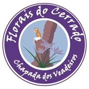 Curso de Forais do cerrado em Junho e Julho na Chapada dos Veadeiros 2011