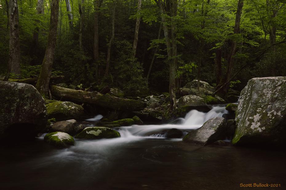 Cosby Creek 5-15-21