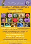 CURSO INTENSIVO DE FLORAIS DO CERRADO E ÁGUAS CRISTAIS