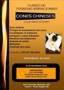 CURSO DE CONES CHINESES