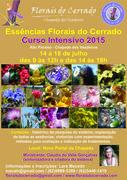 Curso das Essências Florais do Cerrado