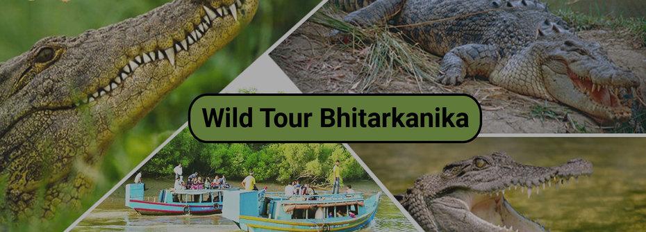 Travel agents in Bhubaneswar